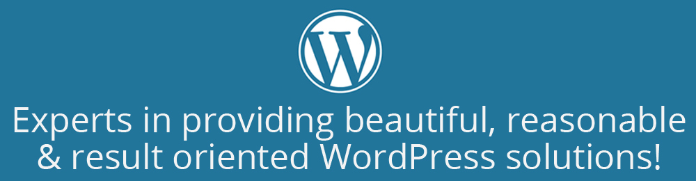 Experts in providing beautiful, reasonable & result oriented WordPress solutions!